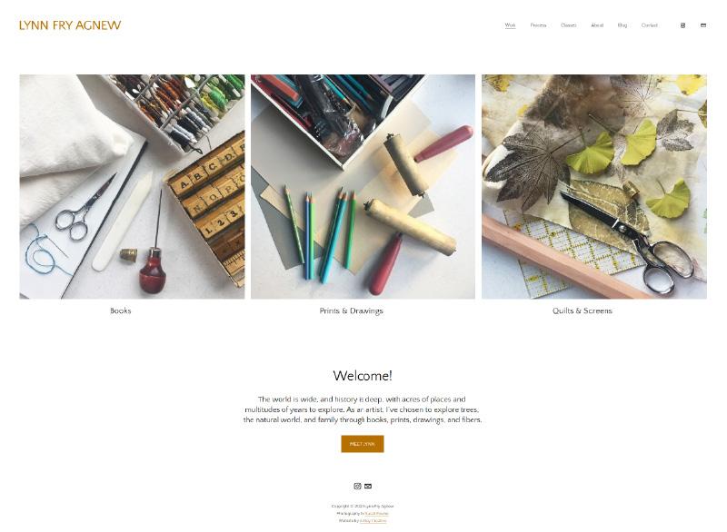 Homepage capture of Lynn Fry Agnew website